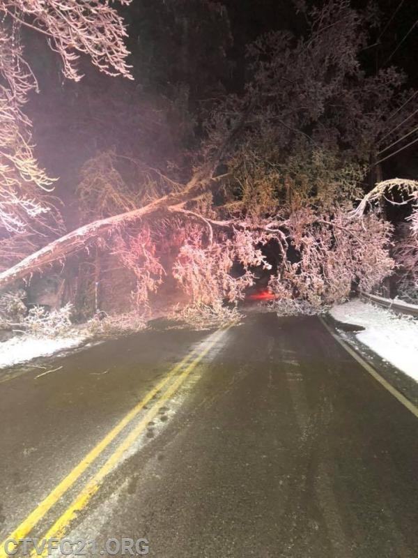 Tree into wires blocking Powell Road